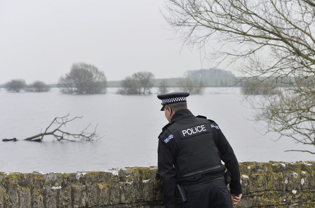 A felled tree lies near where a police officer inspects flooded areas near Muchelney on the Somerset Levels