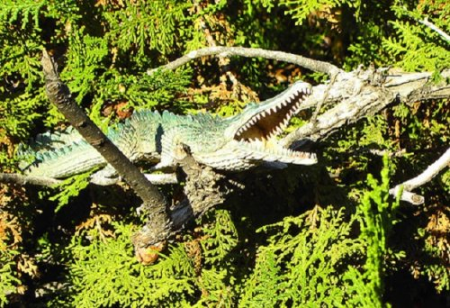 An artist's model of a crocodile in a tree