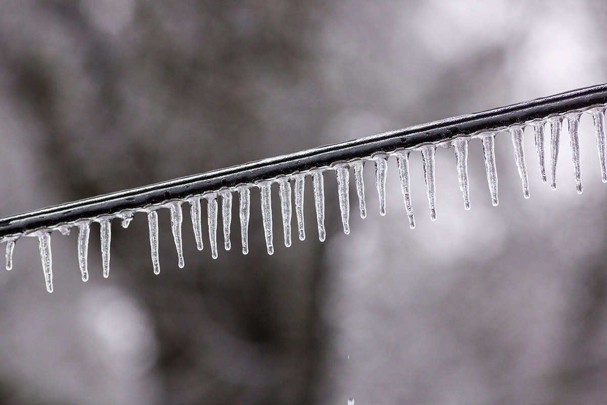 SC icicles