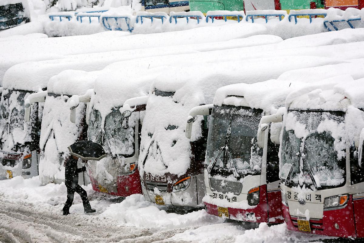 korea snow