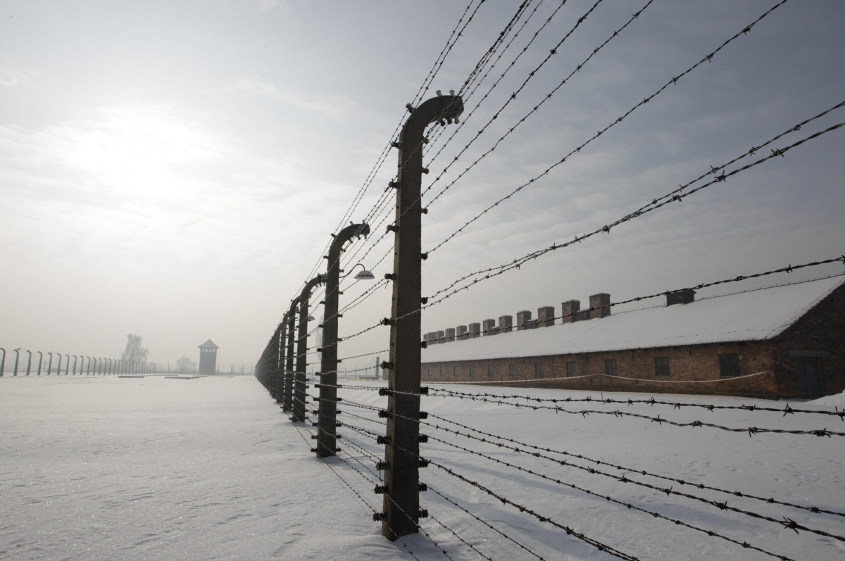 The Last Nazis: Germany Captures Three Suspected Auschwitz Guards ...
