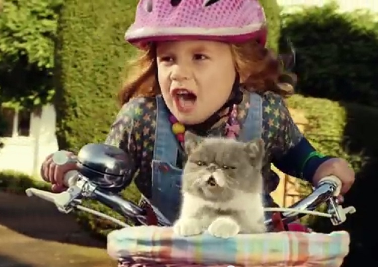 New Three TV ad starring child and singing cat airs today
