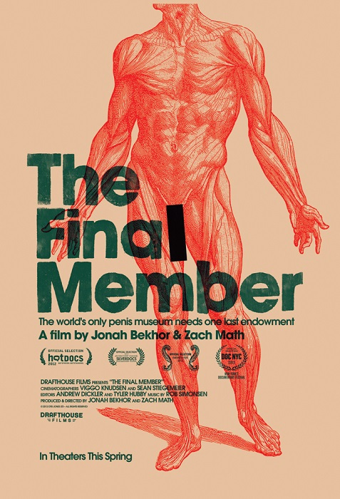 The poster for The Final Member with the strapline: The world's only penis museum needs one last endowment