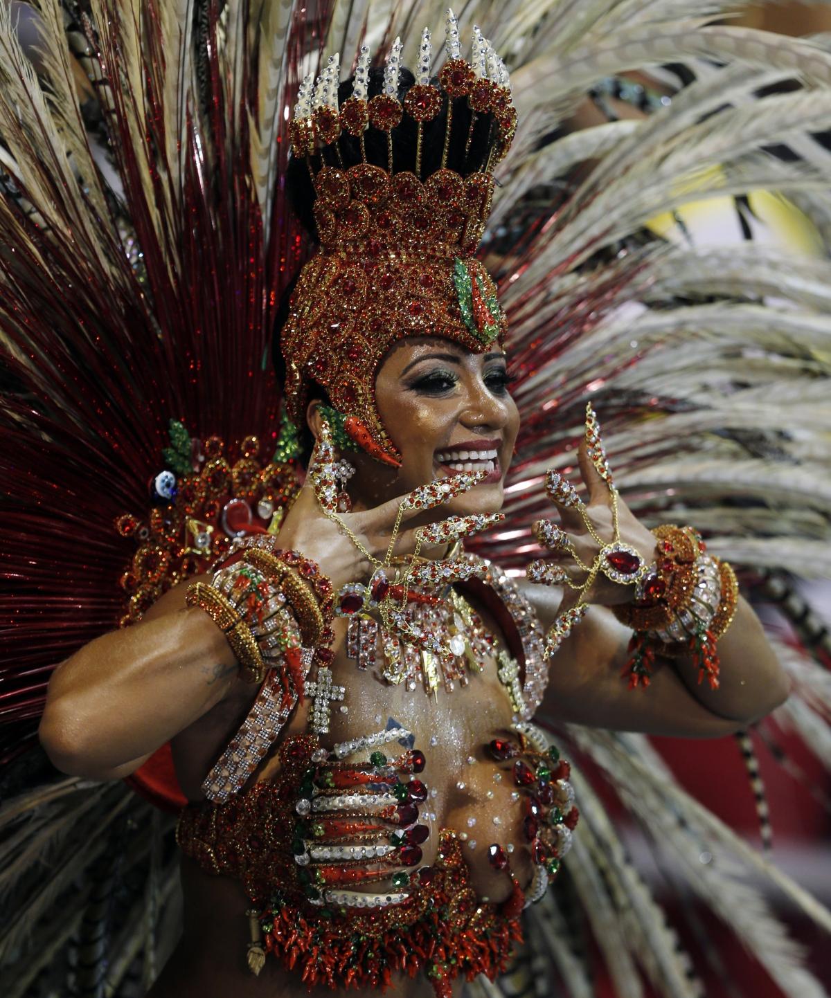 A reveller from the Aguia de Ouro samba school takes part in the second night of the Special Group category of the annual Carnival parade in Sao Paulo's Sambadrome March 2, 2014.