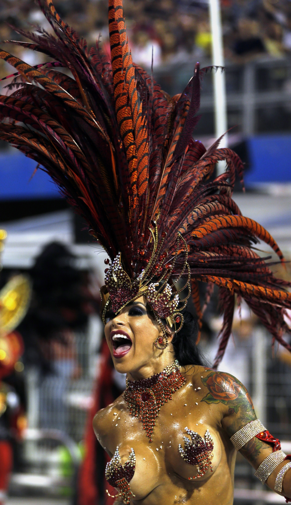 A reveller from the Gavioes da Fiel samba school takes part in the Special Group category of the annual Carnival parade in Sao Paulo's Sambadrome March 1, 2014.