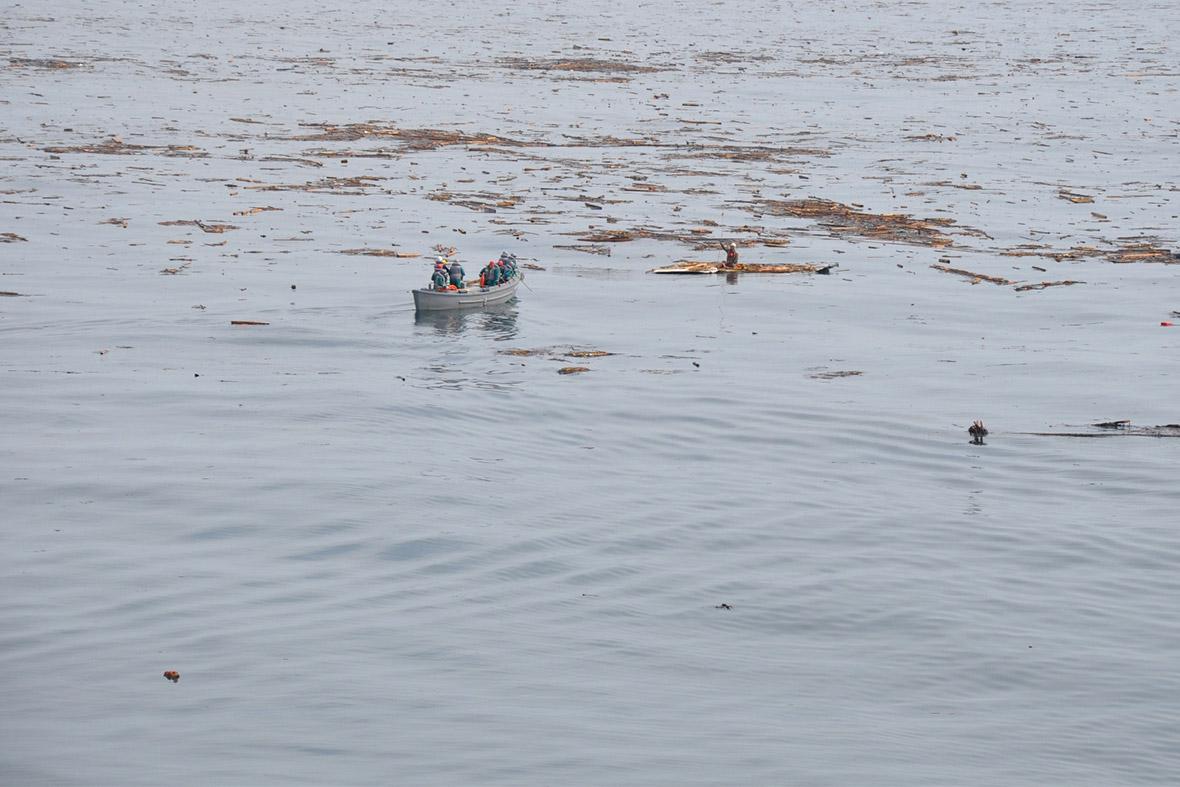 tsunami survivor sea