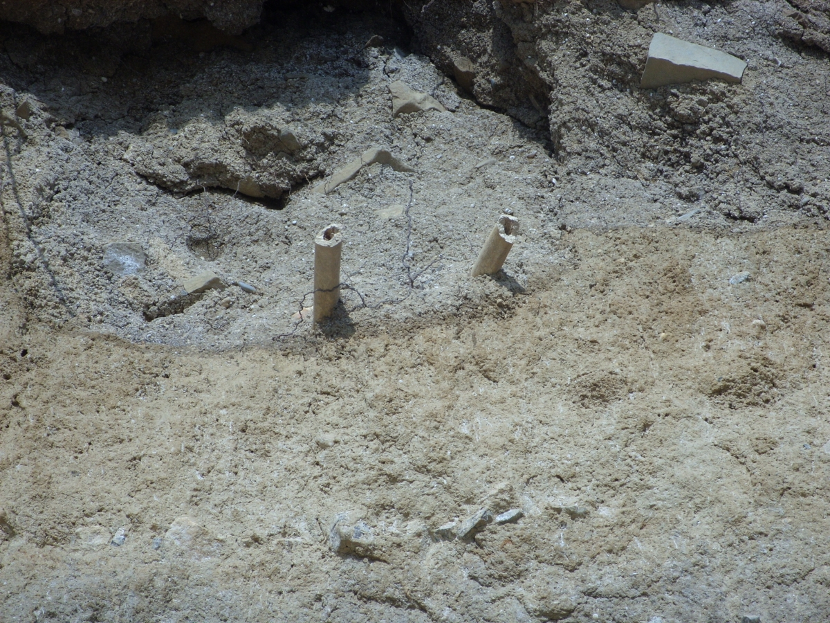 Bones belonging to a medieval monk were found protruding from a cliff in Monknash, near Bridgend in Wales