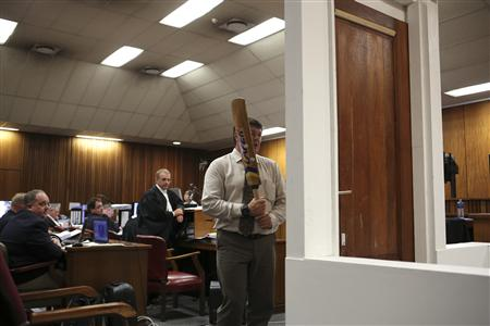 Pistorius Smashed Toilet Door with Bat, Expert Says