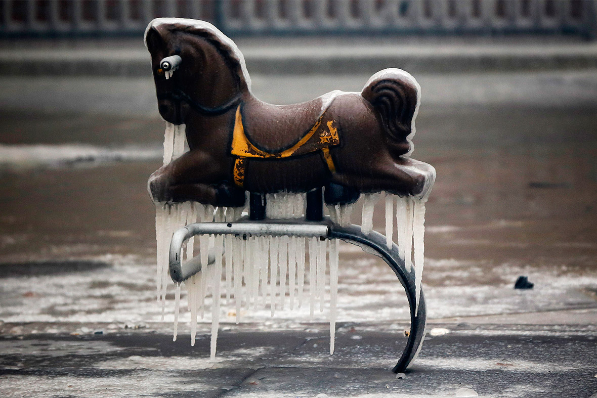 new york icicles horse