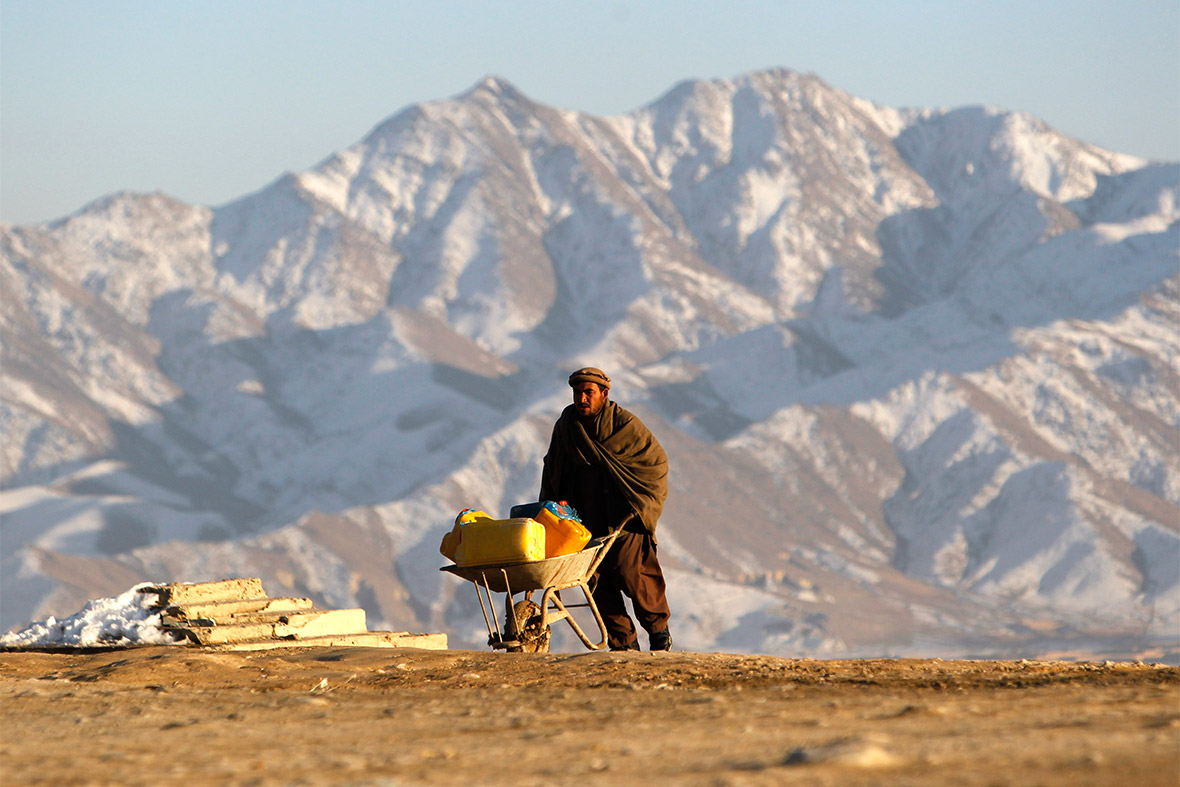 afghan wheelbarrow