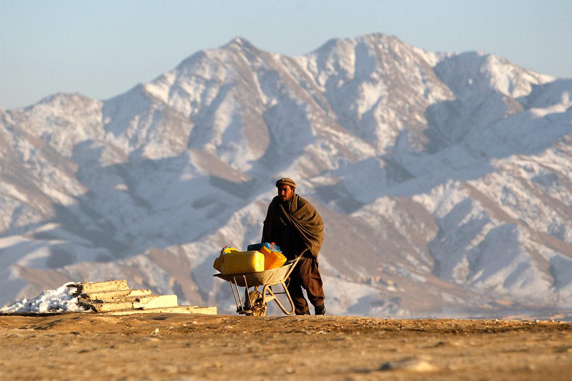 afghan wheelbarrow