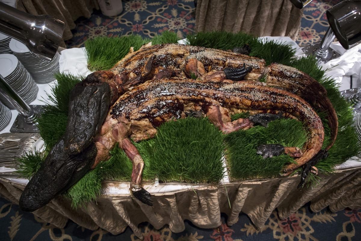 cooked alligator