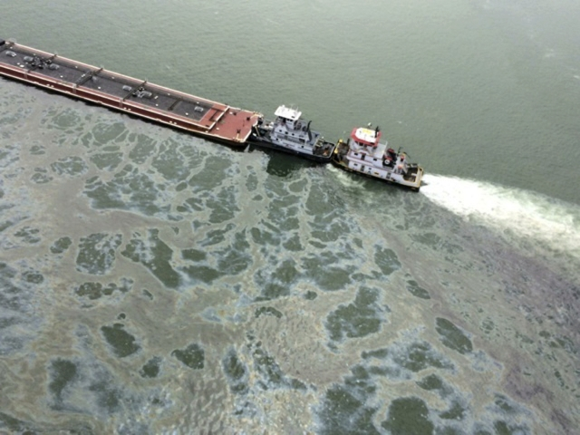 Oil Spill Clean-up Efforts Resume off Texas Gulf Shore