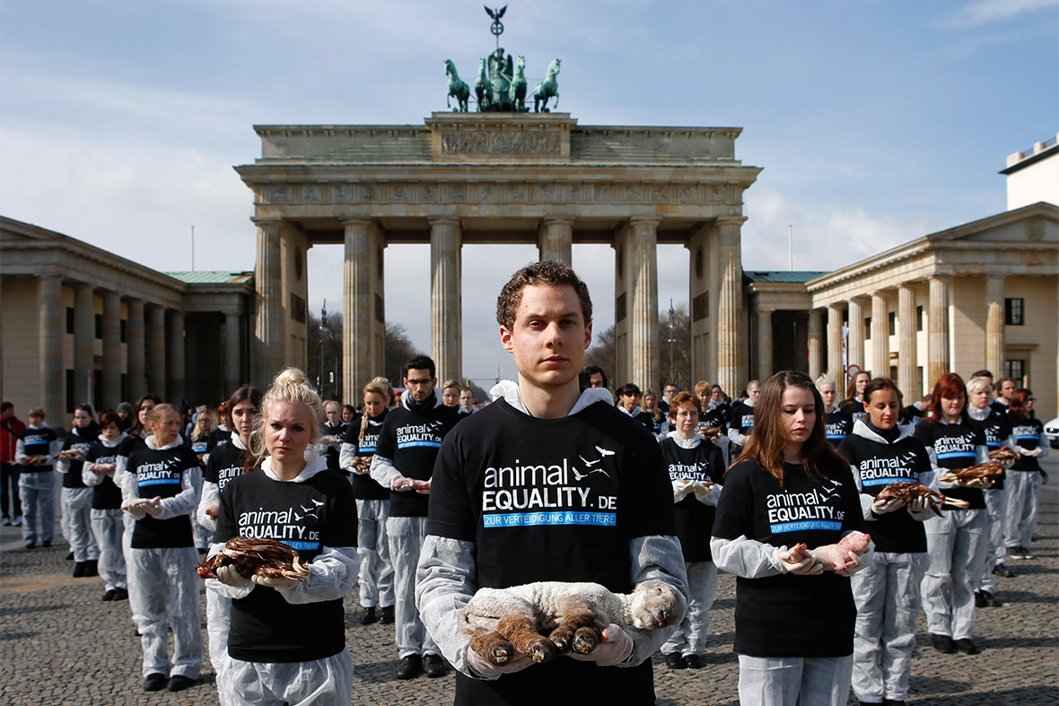 berlin animal protest