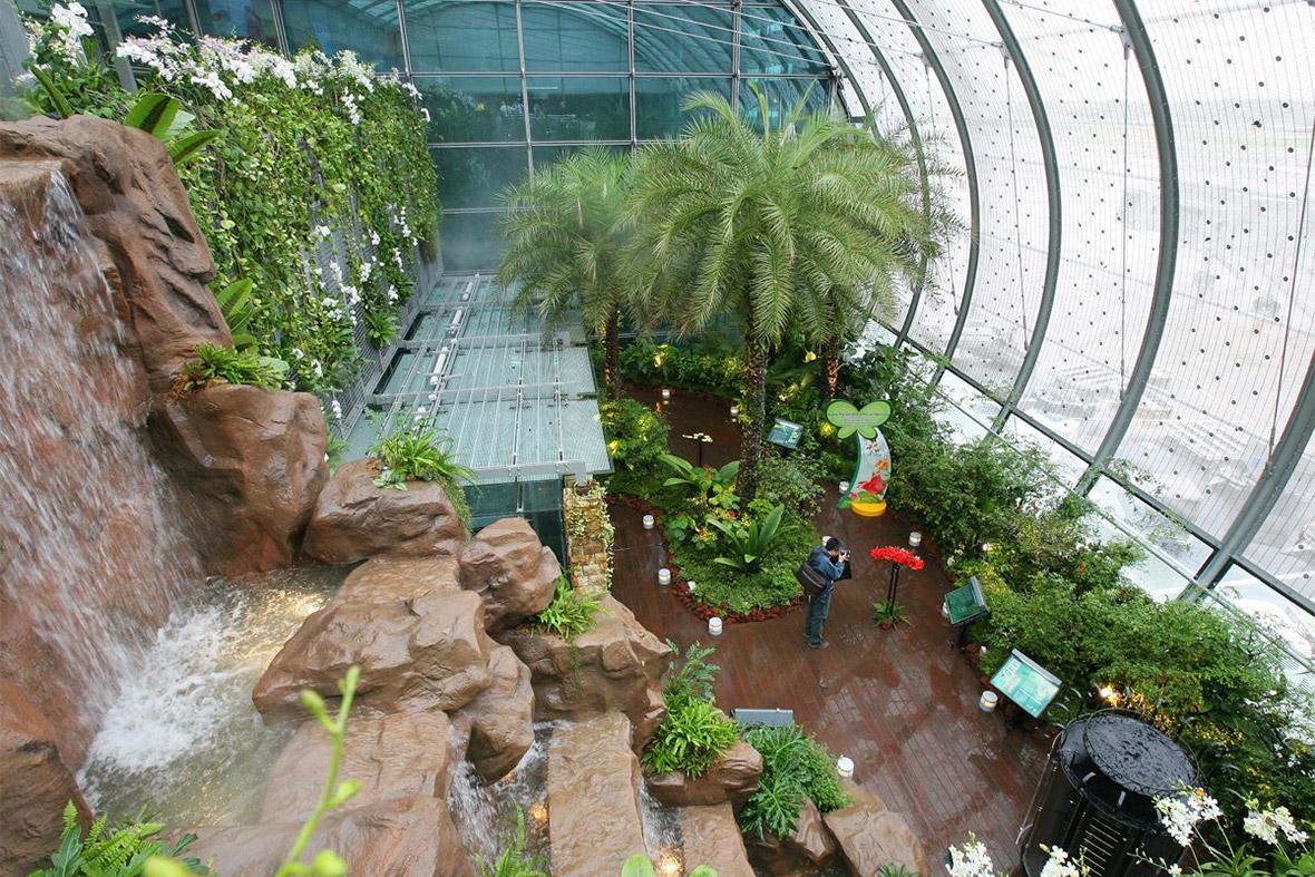 Changi butterfly garden