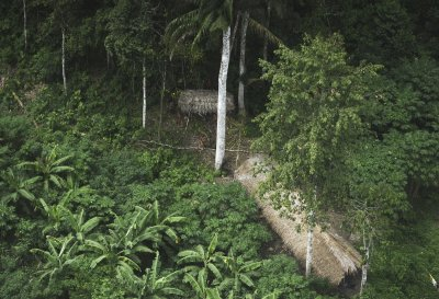 Amazons Uncontacted Tribe