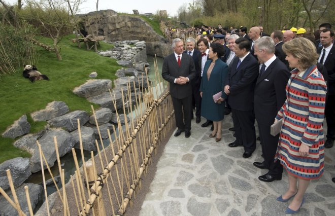 Eric Domb (L), CEO of Pairi Daiza Zoo, Belgium's King Philippe (2nd R), Queen Mathilde (R), China's President Xi Jinping (C) and his wife Peng Liyuan look at panda Hao Hao during an official ceremony in Brugelette March 30, 2014.