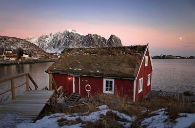Typical red rorbu huts with sod roof in town of Reine on Lofoten