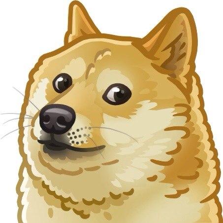 Собаки  Барахолка onlinerby