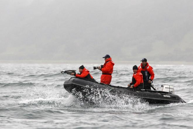 Putin Russia Whaling