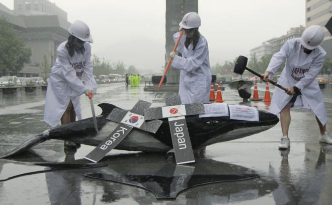 South Korea Whaling
