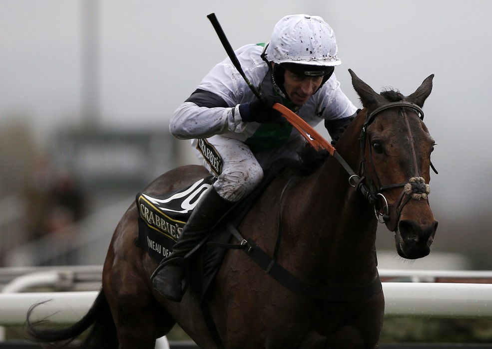 Pineau De Re, ridden by Leighton Aspell, wins the Grand National