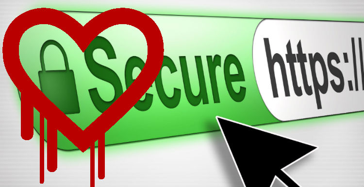 HeartBleed OpenSSL Bug