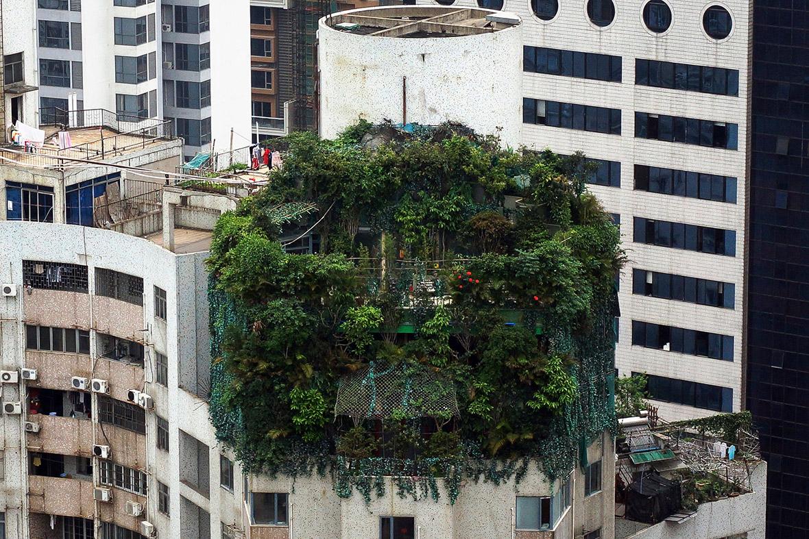 china building