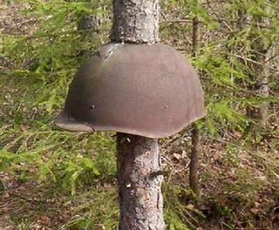 helmet tree