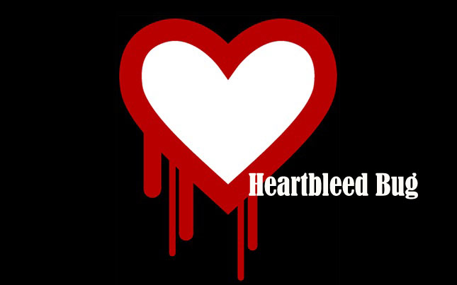 Heartbleed Bug 2.0 - Hackers claim to have found another major security flaw in OpenSSL