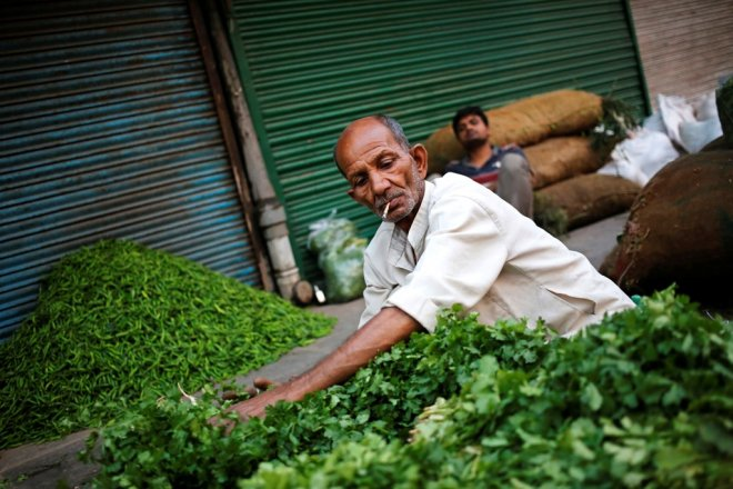Vegetable Vendor Delhi India