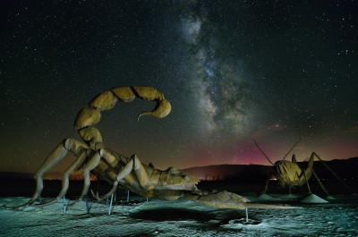 travel scorpion