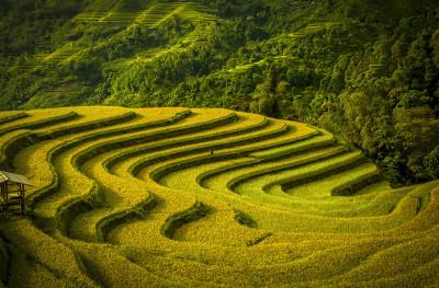 travel terraces