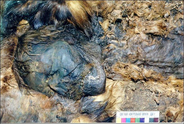 Siberian mummy - accidentally mummified by copper plates