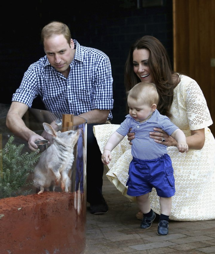 Prince George meets his namesake George the bilby