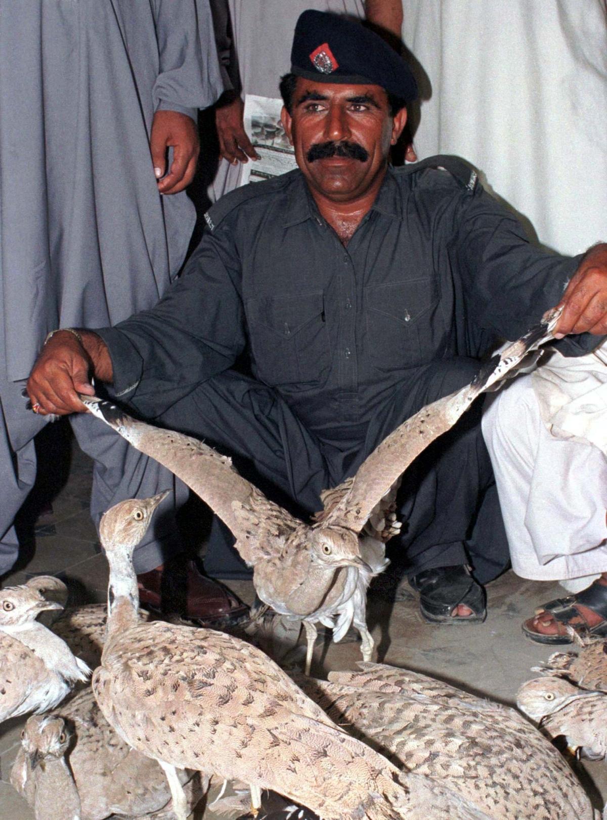 Saudi Prince Accused of Hunting 2,100 Endangered Houbara Bustards in Pakistan Safari