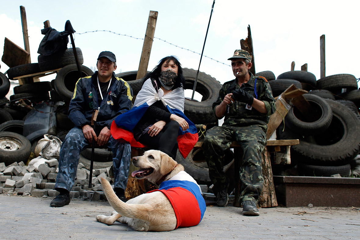donetsk dog