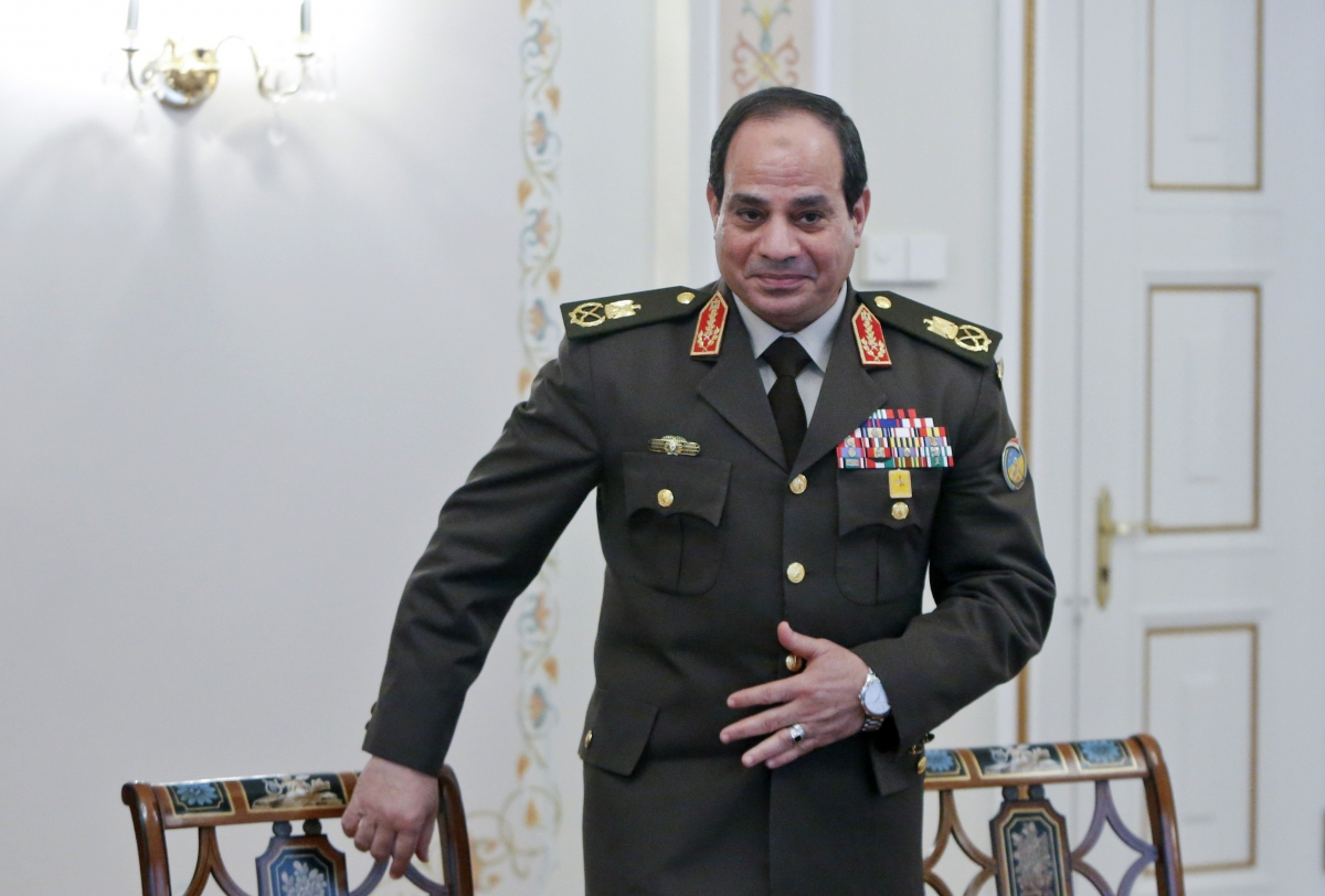 Egypt's al-Sisi on Muslim Brotherhood