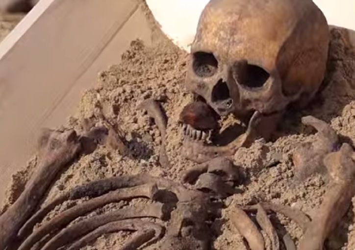 Vampire grave skull in Poland