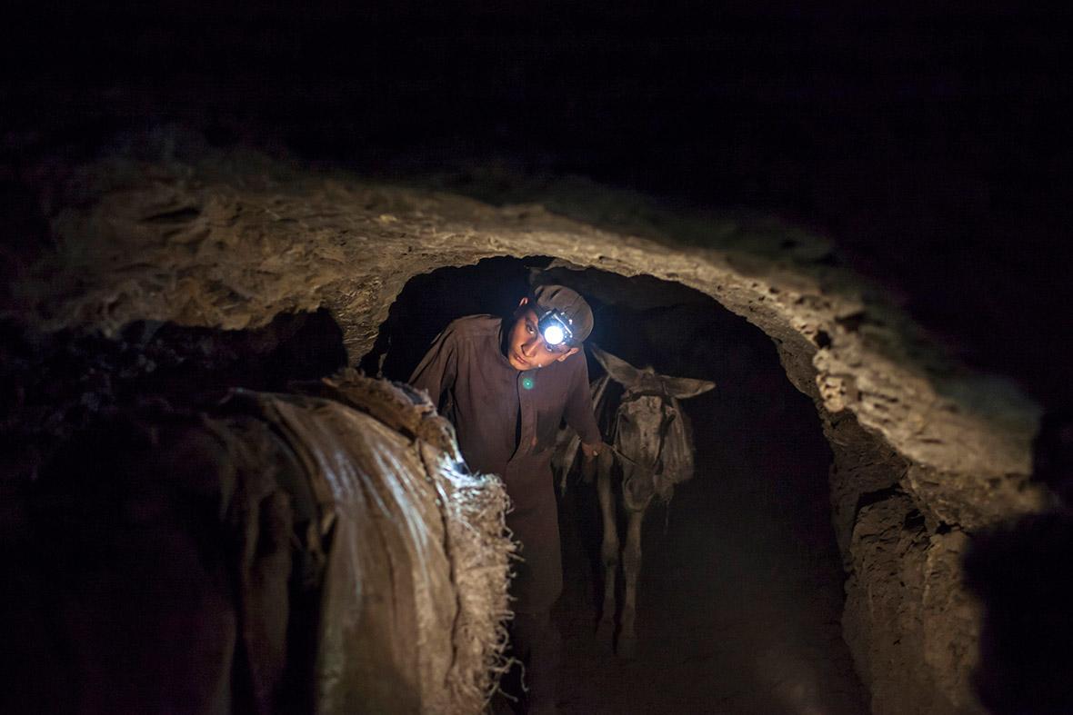 donkey mining