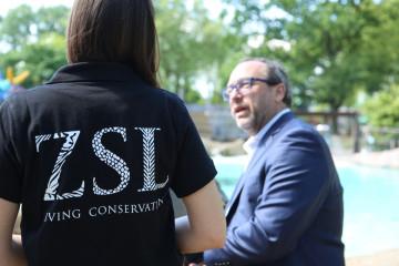 Jimmy Wales Calls EU-Google Ruling Ridiculous