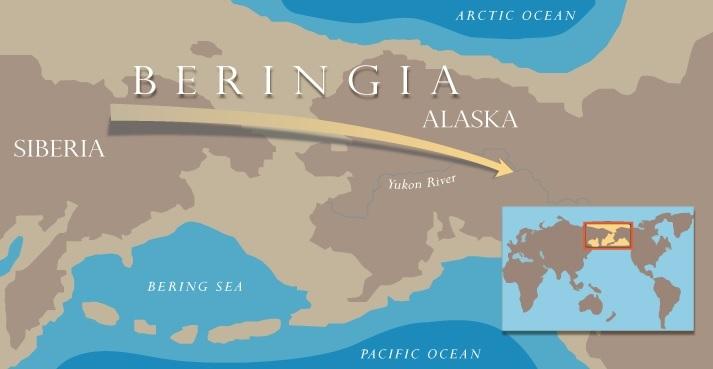 Beringa