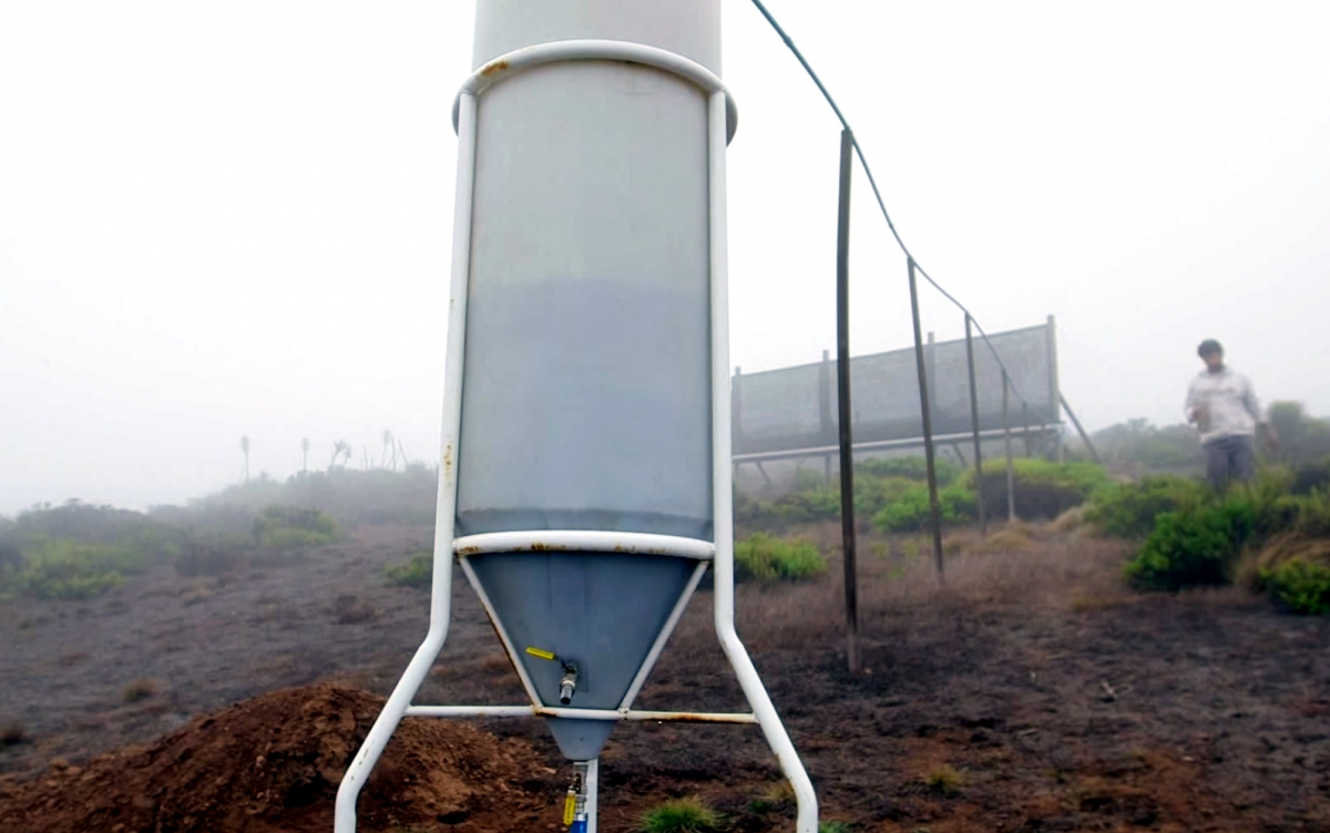 A mesh structure system that collects water from fog that can be used for drinking and agriculture