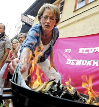 Feminist Initiative burning money