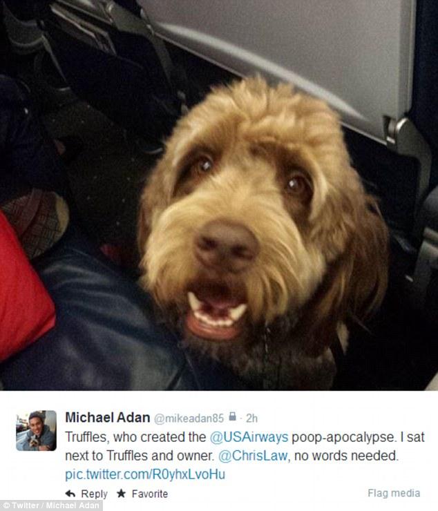 Truffles, who forced Wednesday's emergency landing.