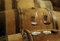 Burgundy Wine Auction in Beaune November 18, 2012