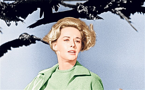 Eerie Portent? Crows swarm around Tippi Hedren in scene from The Birds, by Alfred Hitchcock