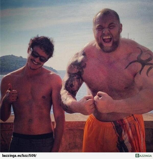 Oberyn Martell and The Mountain