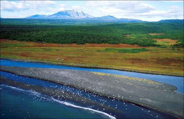 The Siberian tundra where Alexei Gorulenko ate his childhood friend Andrei Koruchkin