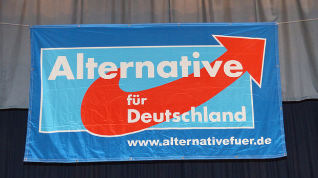 Anti-euro German AfD Party Joins Cameron's EU Parliament Group